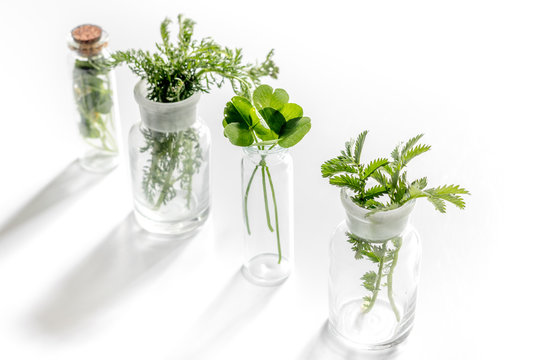 Homeopathy. Medicinal herbs in glass on white background