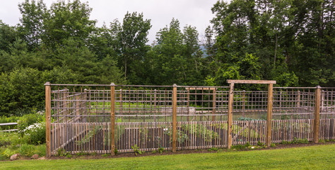 garden with tall wooden fencing to keep the deer away