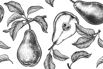 Seamless pattern. Realistic fruit, branch and pear tree leaf. Black and white vegetarian food. Vector illustration art. Vintage engraving. Hand drawing. Template with nature motifs for kitchen design.