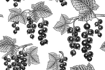 Seamless pattern with black currant.