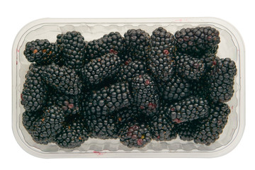 fresh tasty blackberry in a plastic transparent tray