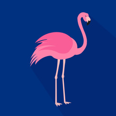 Flamingo cartoon flat icon. Brazil. Vector illustration.