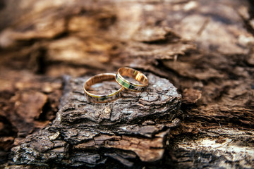 Wedding rings on wooden surface