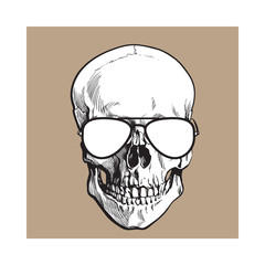 Hand drawn human skull wearing black and white aviator sunglasses, sketch style vector illustration isolated on brown background. Realistic hand drawing of skull wearing sunglasses