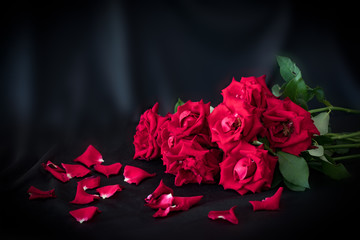 red roses flowers with red couple heart valentine festival gift on dark background