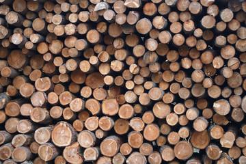 lumberyard timber wood log pile stack forest industry natural resource