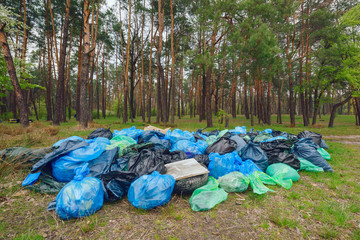 Rubbish heap in a forest/Illegal dumping of garbage in forest.Pile of Black, Blue and Green garbage bags in the forest ecology.