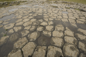 Basalt columns photographed in Iceland