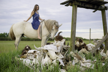 buffalo or bison skulls with brunette girl riding bareback on white horse in field of green grass. vertical image