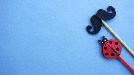 Top or flat lay view of Photo booth props a black mustache and a ladybird on a blue background flat lay. Birthday parties and weddings.