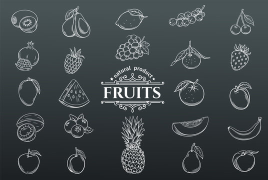 Vector hand drawn fruits icons set.