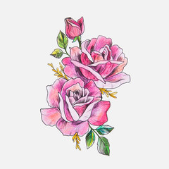 Sketch of a beautiful branch of red roses on a white background.