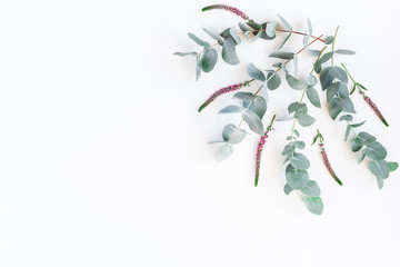 Flowers composition. Floral frame made of pink flowers and eucalyptus branches on white background. Flat lay, top view, copy space