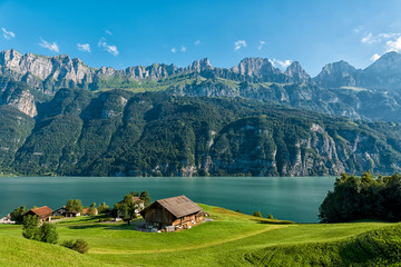 house in swiss. swiss is famous of building cabins and houses across the mountains and rivers. Wall mural