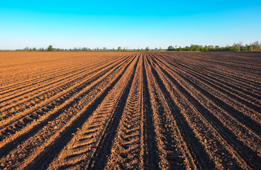 Fototapeta Preparing field for planting. Plowed soil  in spring time with blue sky. obraz