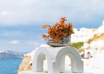 Pot with a cactus on the veranda. Oia Santorini Island
