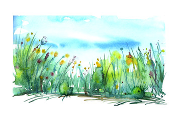 Watercolor landscape  with the image of wild grasses, flowers, green plants, fields. Against the background of the blue sky. Abstract paint spots, artwork. Vintage postcard, Logo