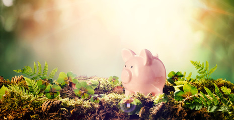 Pink piggy bank outdoors in nature