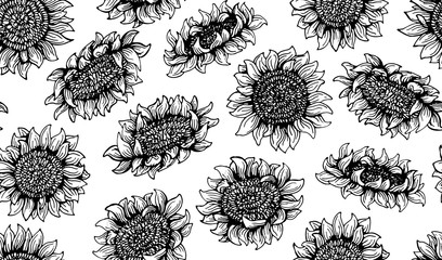 seamless pattern Graphic sunflower and sunflower seeds