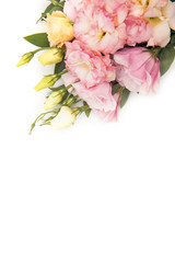 Top view of beautiful tender flowers and buds isolated on white