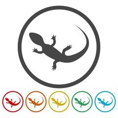Lizard icons set vector - Illustration