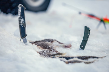 Winter fishing rod and knives