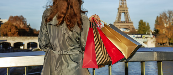 elegant woman with shopping bags looking on Eiffel tower, Paris