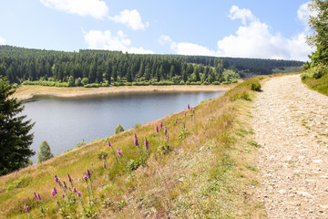 Hiking and biking, Nationalpark Harz, Eckerstausee,