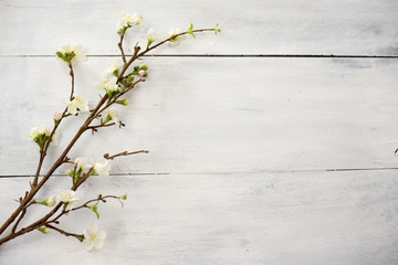 Artificial apple blossom on white wooden
