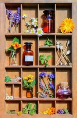 Heilpflanzen und Medizinfläschchen