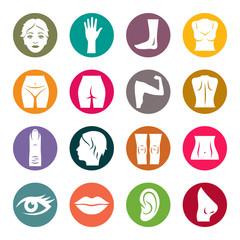 Human body parts icon set
