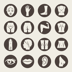 Body parts icons