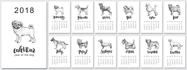 2018 vector calendar design with dogs breeds. Hand drawn llustrations. and calligraphy.