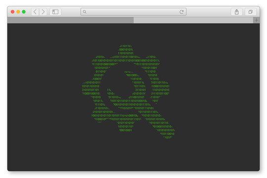 PC Browser - Einstellungen