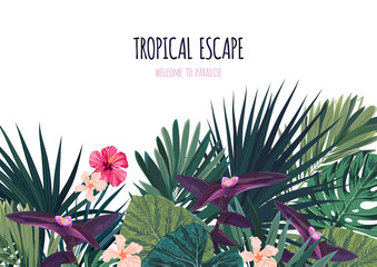 Floral horizontal postcard design with hibiscus flowers, monstera and royal palm leaves. Exotic hawaiian vector background.