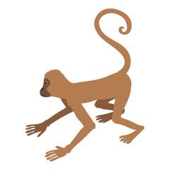 Playful monkey icon, cartoon style