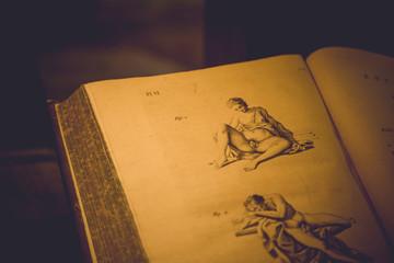 Old Medicine book