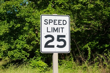 The speed limit sign with the green leaves background.