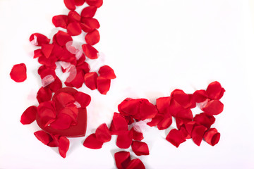 valentines roses and hearts scattered loose along a studio background