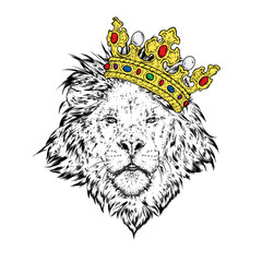 A beautiful lion in the crown. Vector illustration for a postcard or a poster, print for clothes.