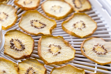 Dried golden kiwi fruit on a food dehydrator with shallow depth of field
