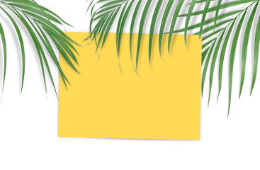 Tropical palm leaves with empty paper for your design on white background. Minimal nature. Summer Styled.  Flat lay. High resolution 5500 x 3600 pixels in size