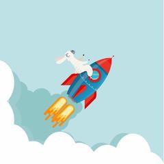 alpaca on top of a rocket