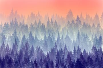 Trees in morning fog. Digital painting.