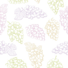 Grapes fruit graphic color seamless pattern sketch background illustration vector