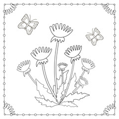 Coloring page from the flowers and butterflies