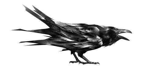 sketch of a crow sitting on white background Wall mural