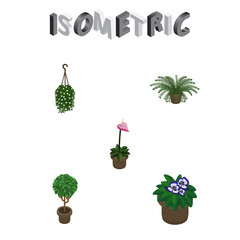 Isometric Houseplant Set Of Tree, Flowerpot, Plant And Other Vector Objects. Also Includes Plant, Pot, Fern Elements.