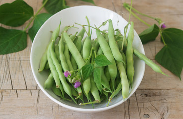 Pods of beans with flowers and leaves.