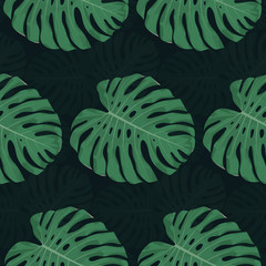 Exotic seamless pattern. Vector illustration of tropical plant leaves on a dark background